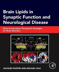 Brain Lipids in Synaptic Function and Neurological Disease: Clues to Innovative Therapeutic Strategies for Brain Disorders - Jacques Fantini,Nouara Yahi - cover