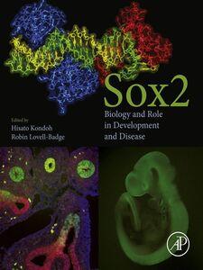 Ebook in inglese Sox2 -, -