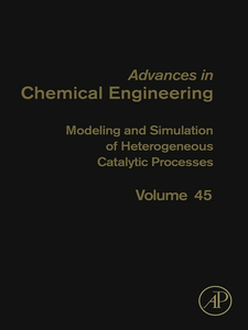 Ebook in inglese Modeling and Simulation of Heterogeneous Catalytic Processes -, -