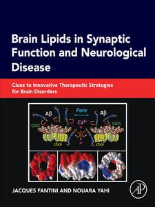 Ebook in inglese Brain Lipids in Synaptic Function and Neurological Disease Fantini, Jacques , Yahi, Nouara