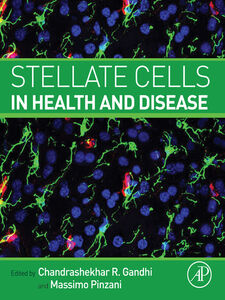 Ebook in inglese Stellate Cells in Health and Disease