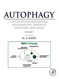 Ebook in inglese Autophagy -, -