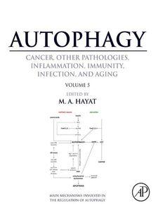 Ebook in inglese Autophagy -, -