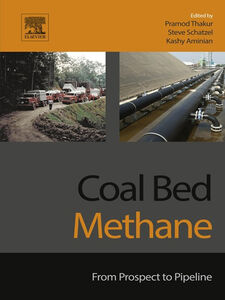 Ebook in inglese Coal Bed Methane