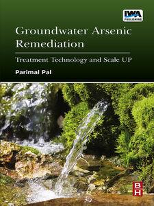 Ebook in inglese Groundwater Arsenic Remediation Pal, Parimal