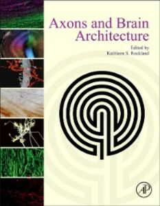 Ebook in inglese Axons and Brain Architecture -, -