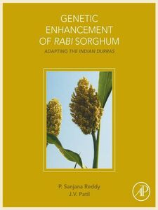 Ebook in inglese Genetic Enhancement of Rabi Sorghum Patil, J.V. , Reddy, Sanjana