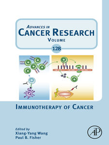 Ebook in inglese Immunotherapy of Cancer