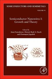 Semiconductor Nanowires I: Growth and Theory - cover