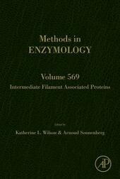 Intermediate Filament Associated Proteins