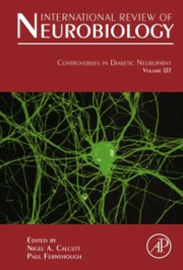 Ebook in inglese Controversies In Diabetic Neuropathy -, -