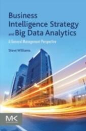 Business Intelligence Strategy and Big Data Analytics