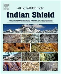 Indian Shield: Precambrian Evolution and Phanerozoic Reconstitution - Roy,Purohit - cover