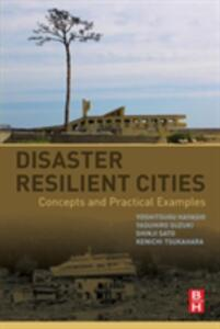 Disaster Resilient Cities: Concepts and Practical Examples - Yoshitsugu Hayashi,Yasuhiro Suzuki,Shinji Sato - cover