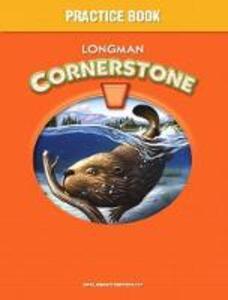 Longman Cornerstone B Practice Book - cover