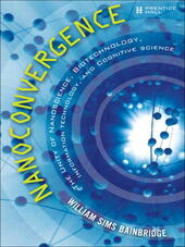 Nanoconvergence