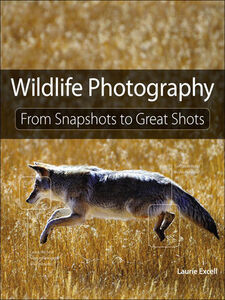 Foto Cover di Wildlife Photography, Ebook inglese di Laurie S. Excell, edito da Pearson Education