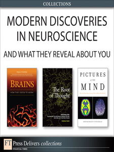 Foto Cover di Neuroscience, Ebook inglese di AA.VV edito da Pearson Education