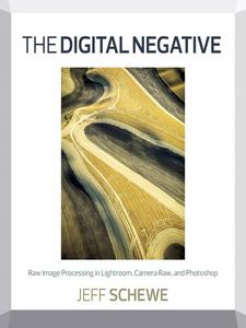 Ebook in inglese The Digital Negative Schewe, Jeff