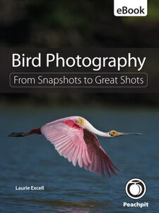 Ebook in inglese Bird Photography Excell, Laurie S.