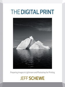 Ebook in inglese The Digital Print Schewe, Jeff