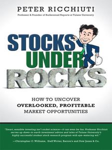Ebook in inglese Stocks Under Rocks Ricchiuti, Peter F