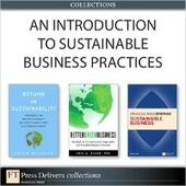 Introduction to Sustainable Business Practices (Collection)