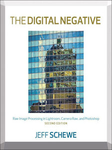 Ebook in inglese The Digital Negative Schewe, Jeff