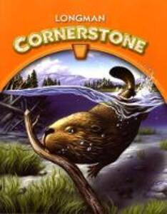 Longman Cornerstone B International Edition - cover