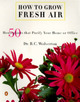 How to Grow Fresh Air: 5