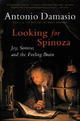 Looking for Spinoza: Joy