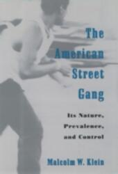 American Street Gang: Its Nature, Prevalence, and Control