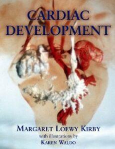 Ebook in inglese Cardiac Development Kirby, Margaret L.