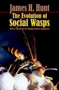 Ebook in inglese Evolution of Social Wasps Hunt, James H.