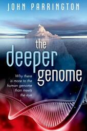 Deeper Genome: Why there is more to the human genome than meets the eye