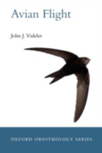 Ebook in inglese Avian Flight Videler, John  J.