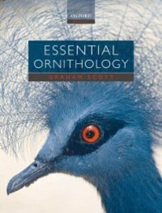Ebook in inglese Essential Ornithology Scott, Graham