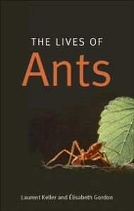 Ebook in inglese Lives of Ants Gordon, Elisabeth , Keller, Laurent