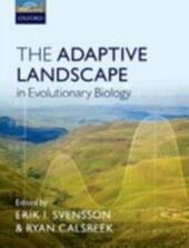Adaptive Landscape in Evolutionary Biology