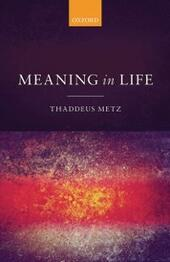 Meaning in Life