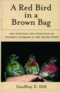 Ebook in inglese Red Bird in a Brown Bag: The Function and Evolution of Colorful Plumage in the House Finch Hill, Geoffrey E.