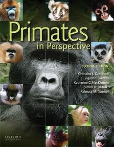 Primates in Perspective - Christina J. Campbell,Agustin Fuentes,Katherine C. MacKinnon - cover
