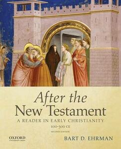 After the New Testament: 100-300 C.E.: A Reader in Early Christianity - Bart D. Ehrman - cover