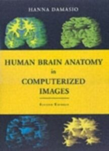 Ebook in inglese Human Brain Anatomy in Computerized Images Damasio, Hanna