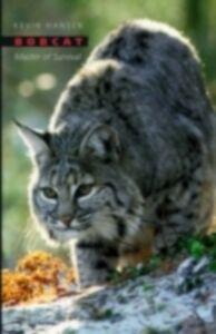 Ebook in inglese Bobcat: Master of Survival Hansen, Kevin
