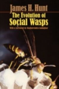 Ebook in inglese Evolution of Social Wasps Hunt, James H.
