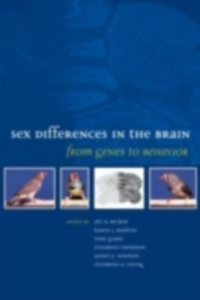 Ebook in inglese Sex Differences in the Brain: From Genes to Behavior -, -