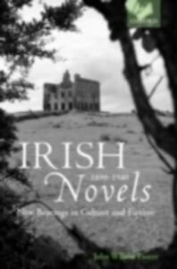 Irish Novels 1890-1940: New Bearings in Culture and Fiction - John Wilson Foster - cover