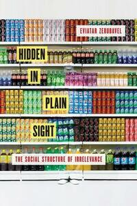 Hidden in Plain Sight: The Social Structure of Irrelevance - Eviatar Zerubavel - cover