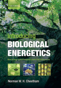 Introducing Biological Energetics: How Energy and Information Control the Living World - Norman W.H. Cheetham - cover